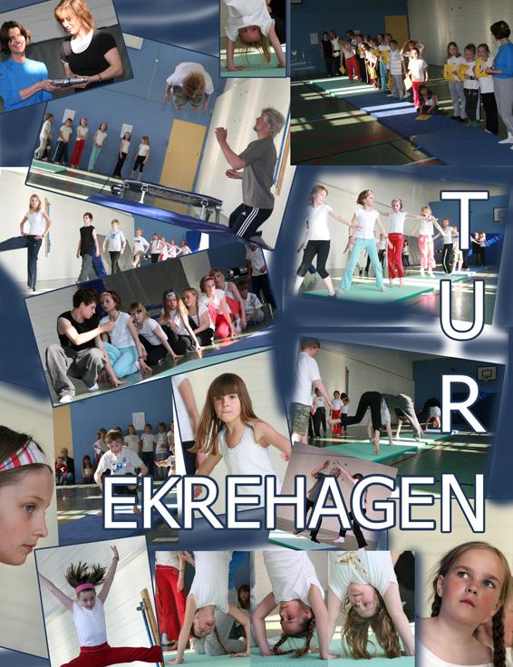 ekre_turn_var2008.jpg