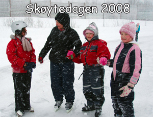skating_2008_small.jpg